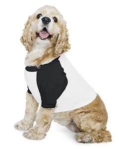 Poly-Cotton 3/4-Sleeve Raglan Dog T-Shirt